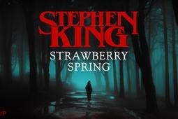StrawberrySpring-1920x1080-1.jpeg