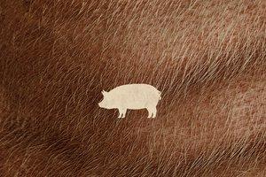 pig poster.jpeg